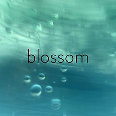 Blossom Artwork.png