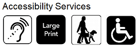 access service 1.PNG