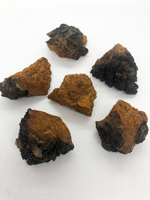 Chaga Mushroom Nuggets