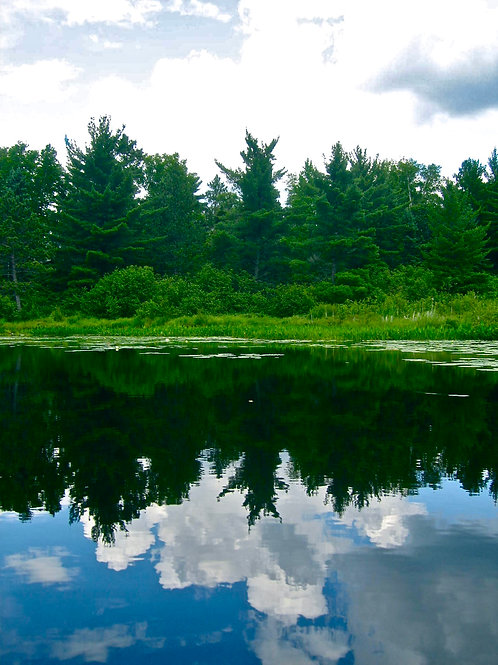Northwoods Reflection