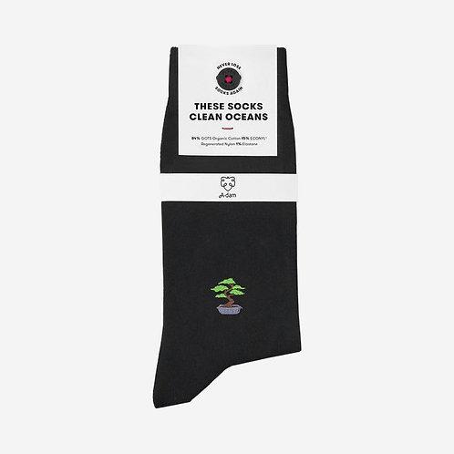 Socken aus Biobaumwolle Bonsai DANIEL