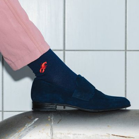 Socken aus Biobaumwolle Hummer JORG