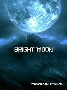 Bright Moon 510.jpg