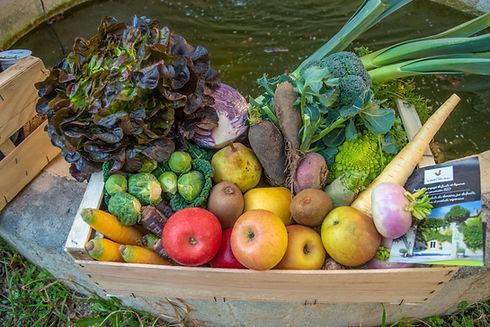 Les paniers de fruits et légumes de l'Hort Del Gal, en direct producteur ! Frais, sains, de sainon, vous pouvez les commander et venir les chercher en drive à Béziers