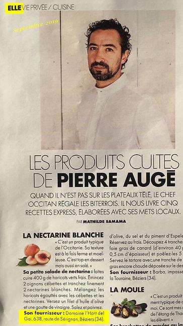2019.09_Elle_Pierre_Augé.jpg