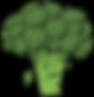 broccoli-40295_960_720.png