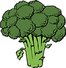 broccoli-40295_960_720.png