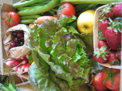 fruits_et_légumes_en_gros_plan