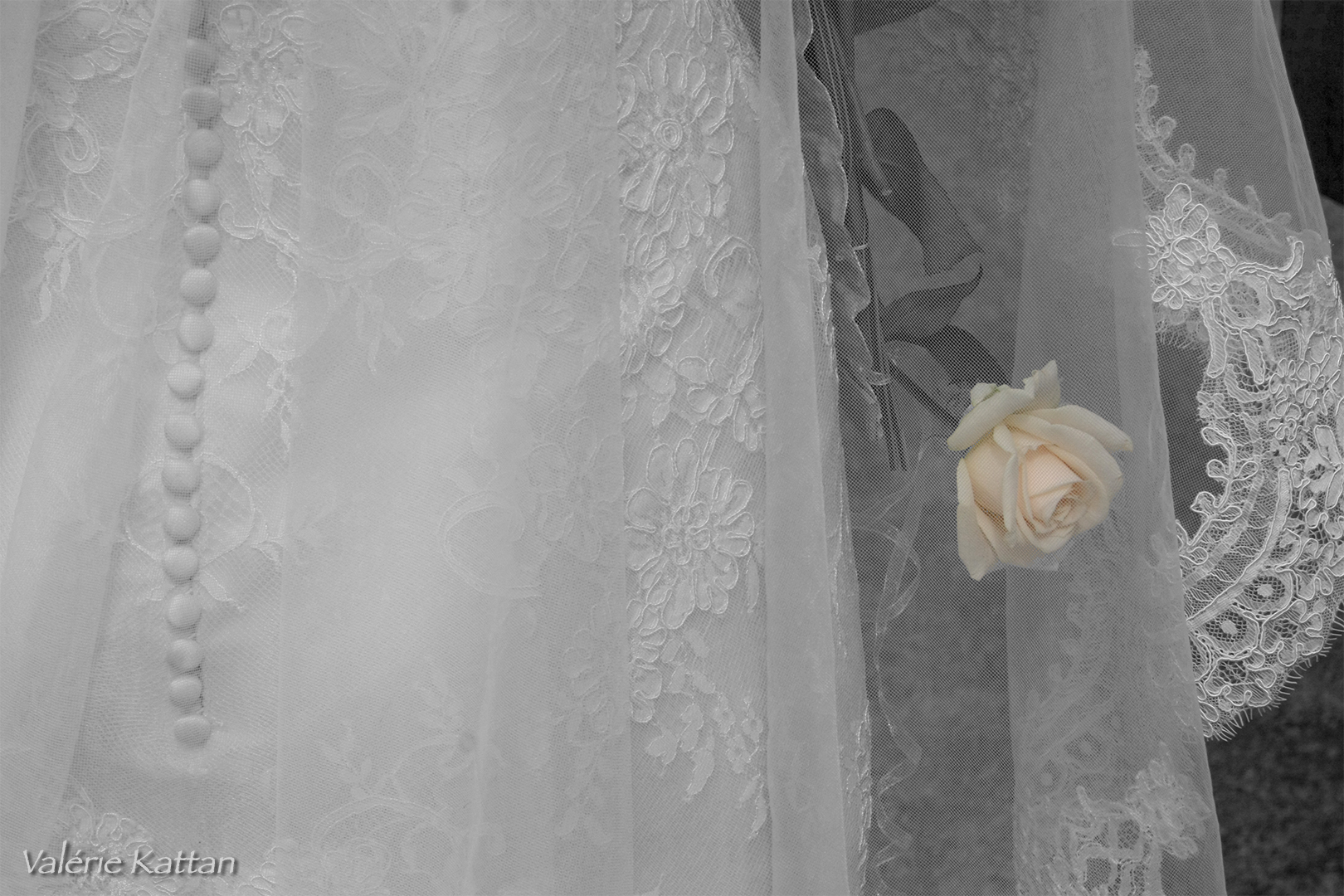 rose dans robe