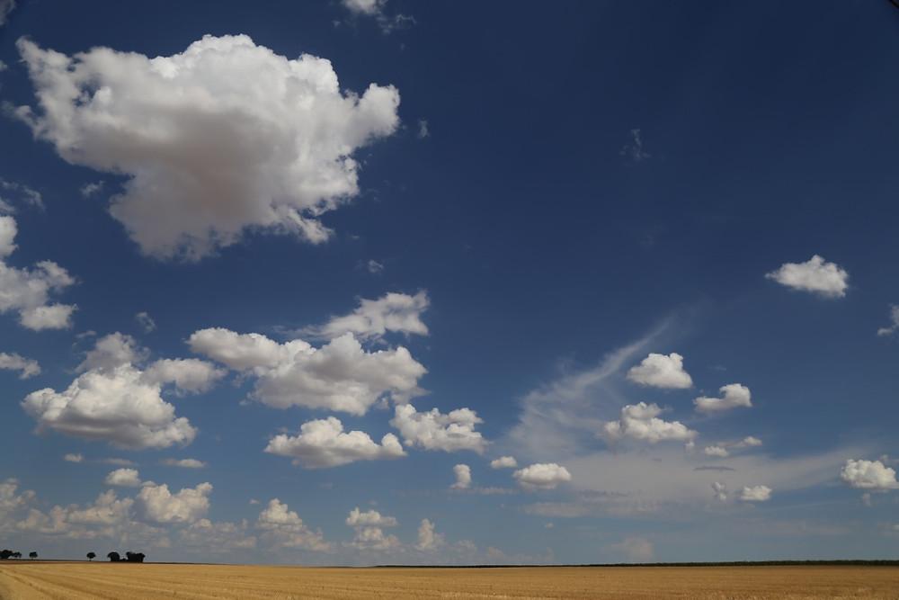 paysage en grand angle d'un champ et ciel nuageux
