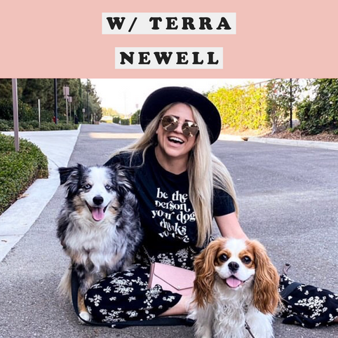 Dirty John Bonus w/ Terra Newell Interview
