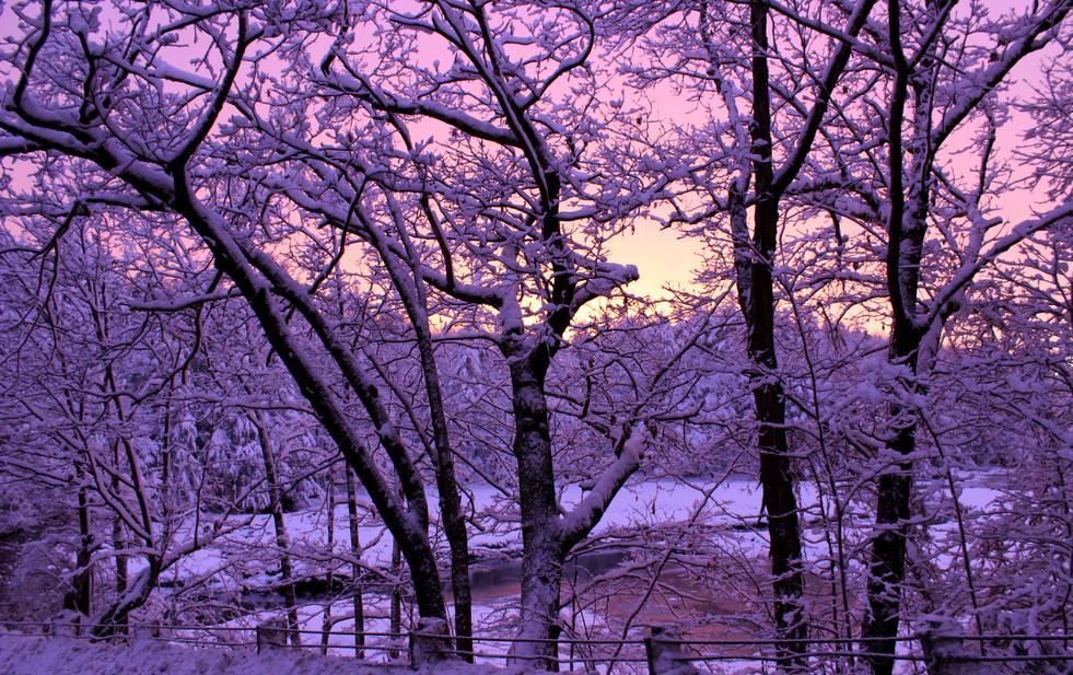 durham pt sunset.jpg