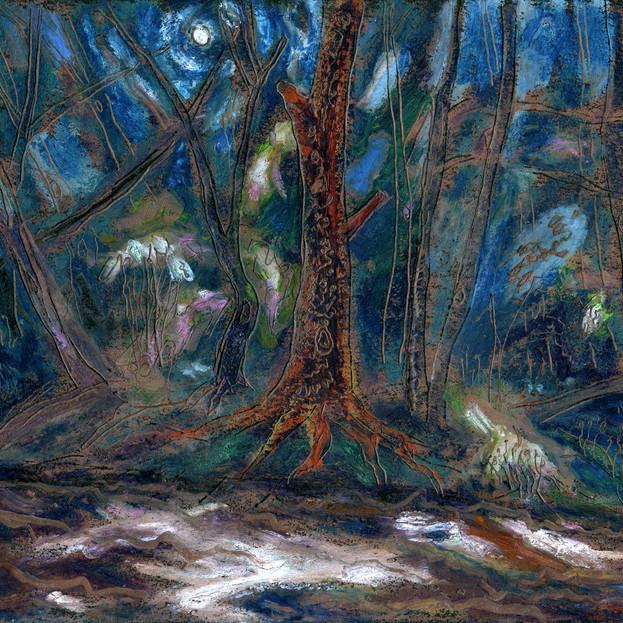 Creek in Moonlight