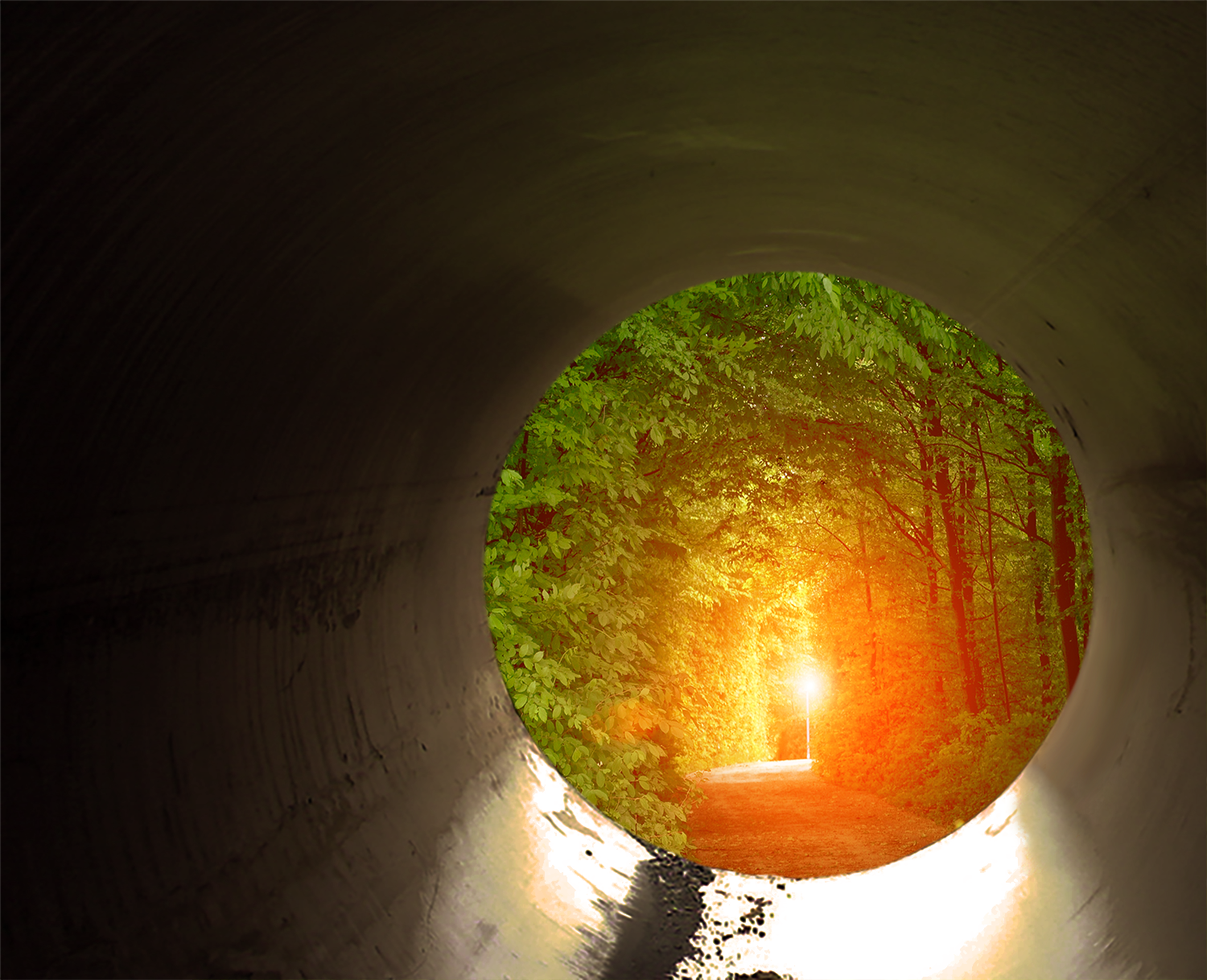 SUNSHINE: The Light at the End of the Tunnel