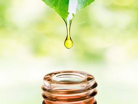Essential Oil มีดีมากกว่าความหอม และยังช่วยลดน้ำหนักได้อีกด้วย