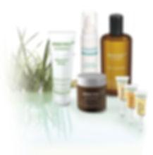 greenpeel kräuterschälkur anti aging faltenbehandlung gesichtsbehandlung
