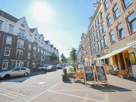 Information about Haarlem city
