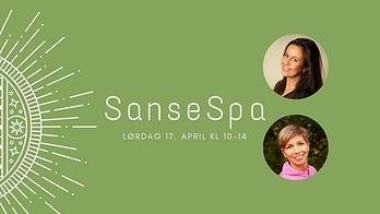 Sansespa (9).png