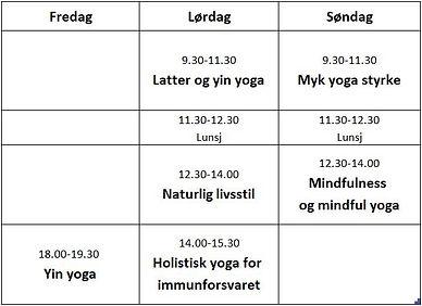 Yoga Halsa program januar 2019