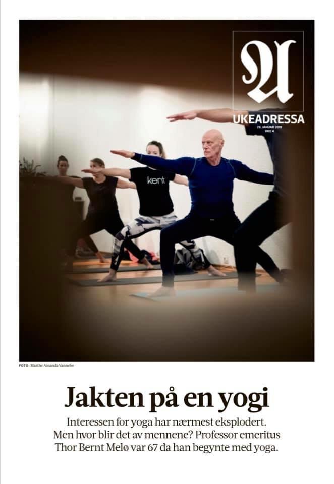 Jakten på en yogi