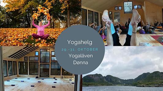 Yogahelg (4).png