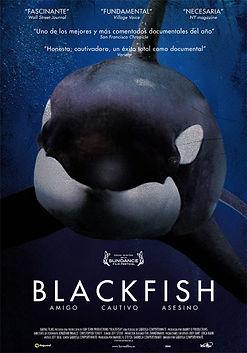 blackfish-poster.jpg