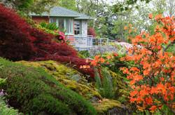 Teahouse and Garden