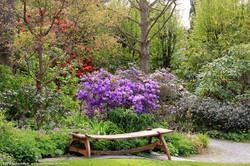 Woodland Gardens-AbkhaziGarden_0021[2]