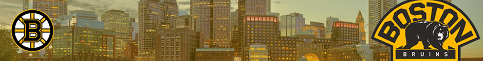BOS-Banner-01.png