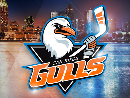 On The Road with the Gulls