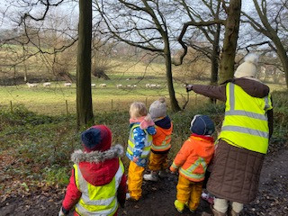 Four reasons why Outdoor Learning is so important.