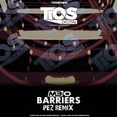 Barriers (Pez Remix) Cover.jpg