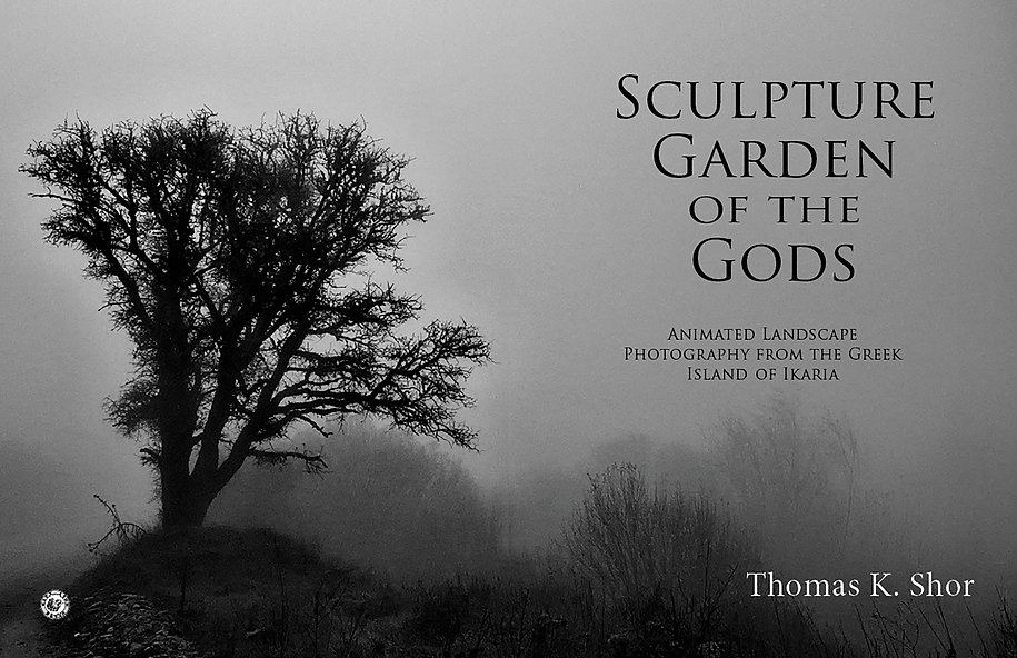 Sculpture Garden INTERIOR FINAL 18 07 17
