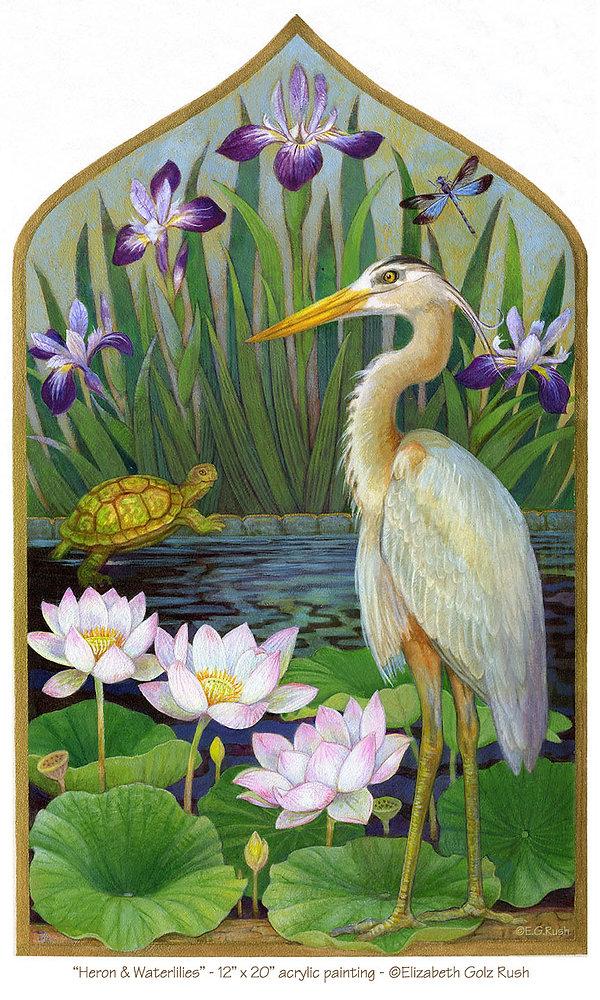 Heron Waterlilies 72dpi.jpg