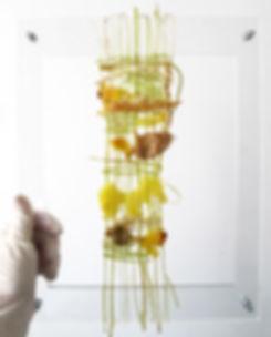 food, design, culinaire, couleurs, buffet, photographie , cuisine, art , comestible, personnalisé, toolsoffood, photo, arts,  pâtisserie, tissage, comestible, textile