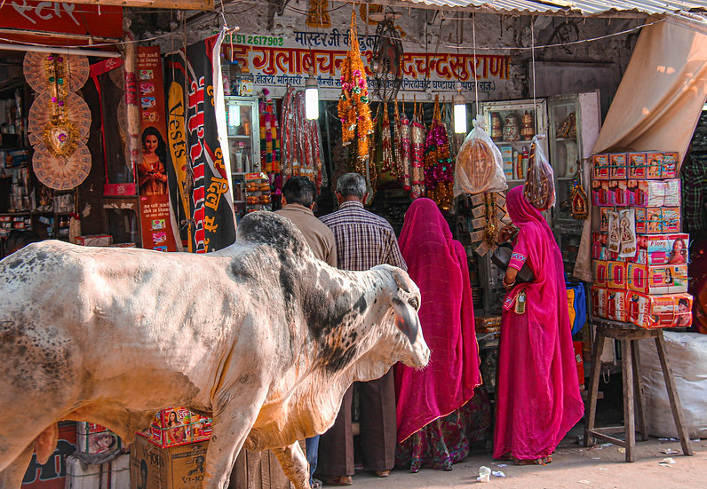 At the Market, Udaipur