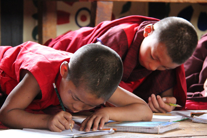 Young Monks at Chimi Lhakhang Monastery