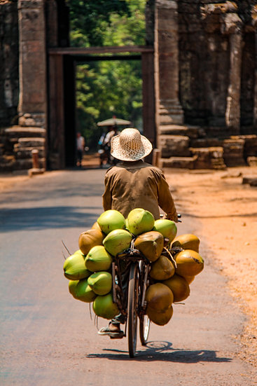 Coconut Seller on his Bicycle