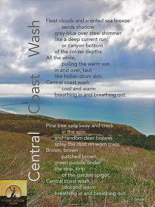Central Coast Wash