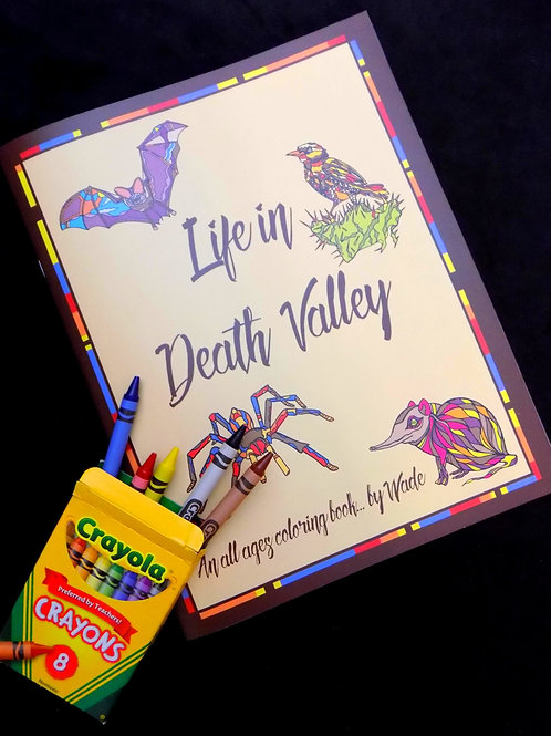 Life in Death Valley Coloring Book