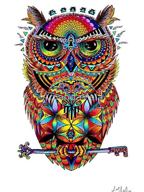 Psychedelic Owl