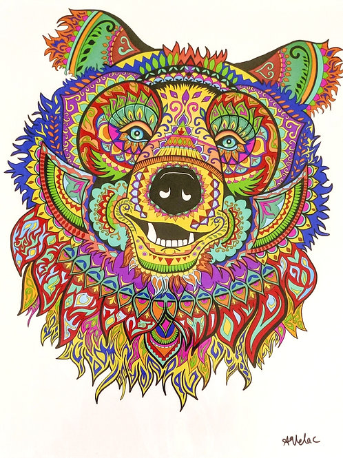Psychedelic Bear