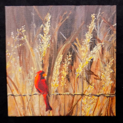 Mini Acrylic Painting: 'Perched'