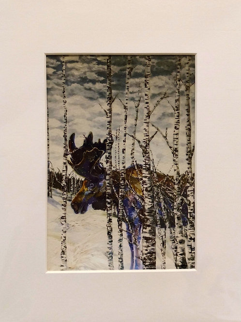 Moose on the Loose - Giclee Print