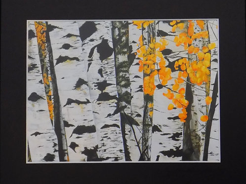 Matted Art Print: Fall Forest