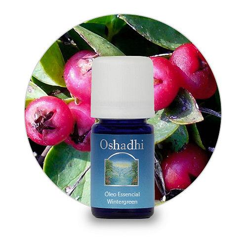 oleo essencial Wintergreen 5 ml oshadhi