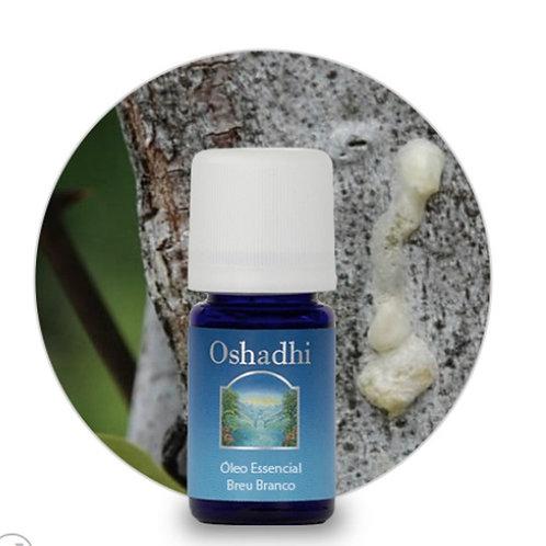 oleo essencial Breu Branco 5ml Oshadhi