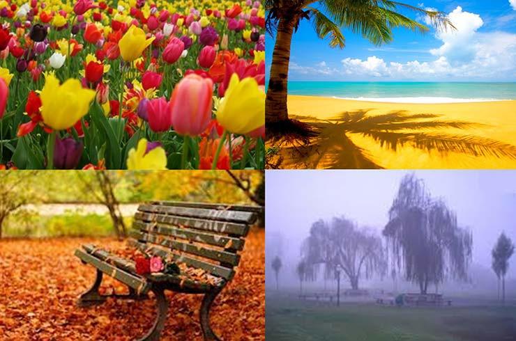 Ser humano e estações da natureza