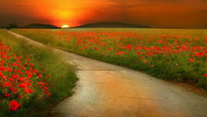 Contemple a paisagem do caminho