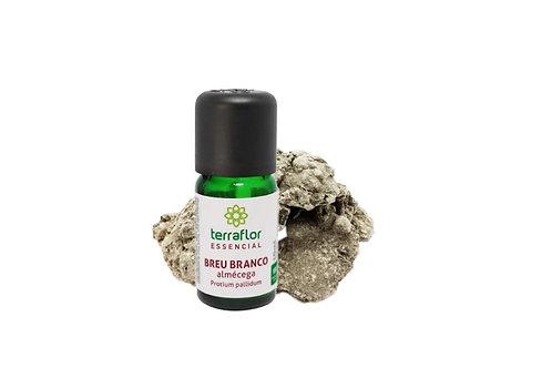 Óleo essencial Breu Branco (Almécega) 10ml